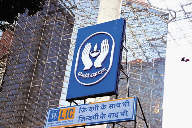 LIC earns over Rs 14,000 crore profit from stock markets